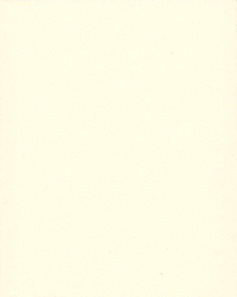 Цвет 001 белый