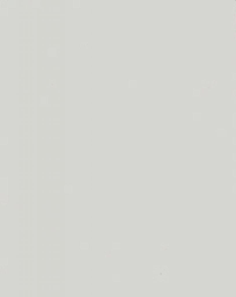 Цвет 018 (418) светло-серый
