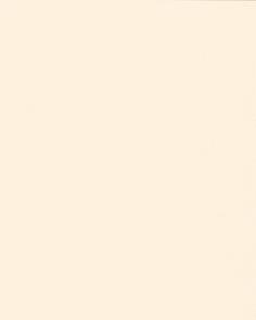 Цвет 167 крем