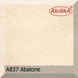 A-837 abalone